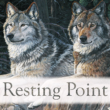 Naturescapes: Resting Point Wolves