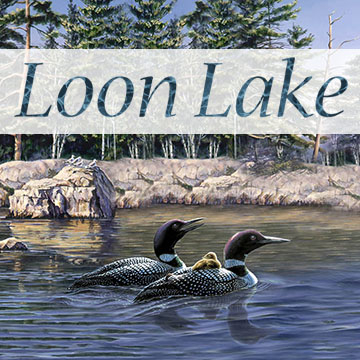 Naturescapes: Loon Lake